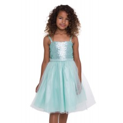 Sequin Dress With Tulle Skirt