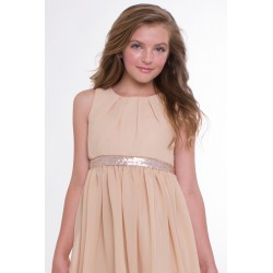 Chiffon Dress with  Sequin...